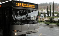 Городской транспорт в Красной Поляне и Роза Хуторе
